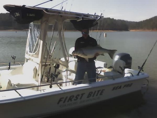 Lake allatoona line side fishing for Lake allatoona fishing guide