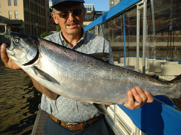 Milwaukee fishing kings and huge coho for Milwaukee river fishing report