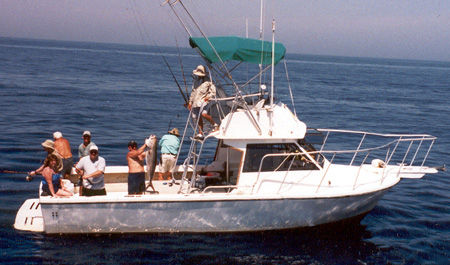 Florida Fishing Report on Having Worked As A Fishing Guide On Florida S West Coast For 30 Years