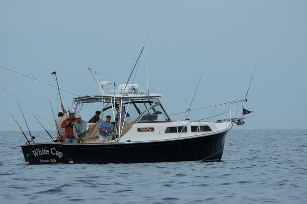 find fishing guides charters