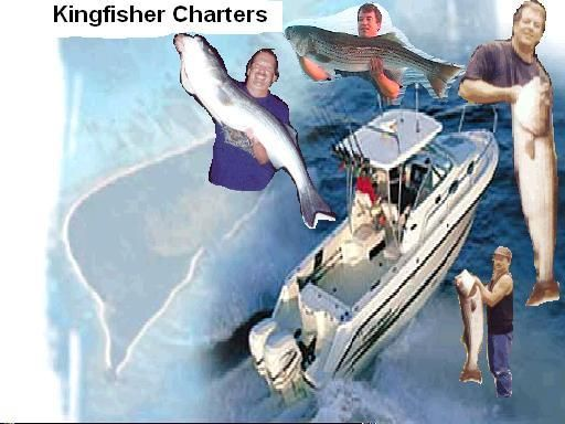 Eastern long island sound and block island sound for Ct fishing charters