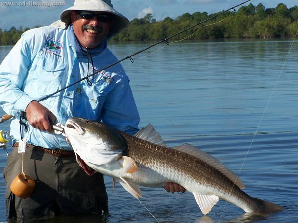 Indian river lagoon coast of florida fishing forecast june for Indian river fishing