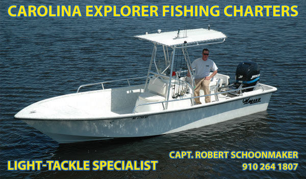 Redfish are still biting strong carolina beach inshore for Nc coastal fishing report
