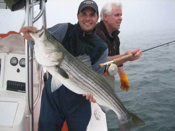 Striped bass bite in long island sound for Bass fishing in ct