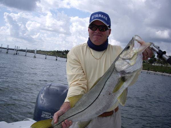 Snook fishing the river for Port st lucie fishing