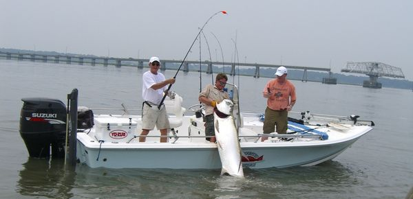 Find fishing guides charters for Beaufort sc fishing charters