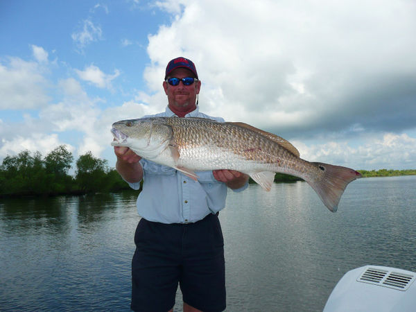 A great day for speckled trout in lafitte louisiana for Louisiana sportsman fishing reports