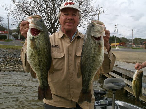 Late winter on alabama 39 s lay lake for big bass for Capt al fishing report