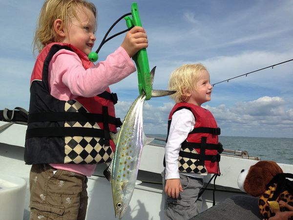Tuesday shark fishing fort myers sanibel captiva for Fort myers fishing charters