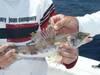 795Unknown_Fish.jpg