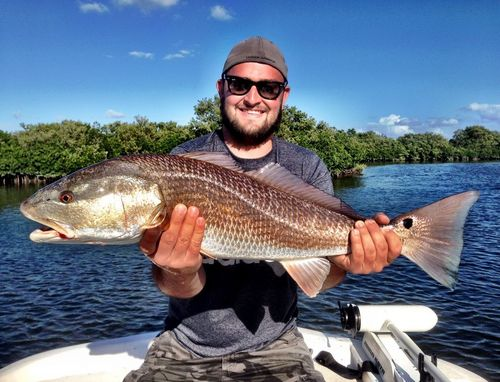 Crystal river and homosassa fl cyberangler photo gallery for Crystal river fl fishing report