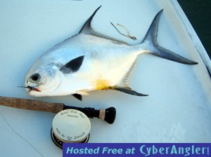 Fall Permit in the Marquesas