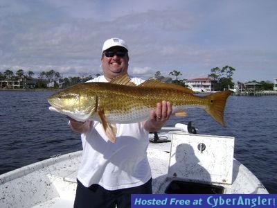 Pensacola beach navarre destin inshore fishing report for Destin fl fishing report
