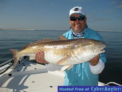 Pensacola navarre perdido key florida inshore fishing for Perdido key fishing