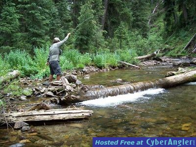 Fishing the pagosa springs area for Fishing colorado springs