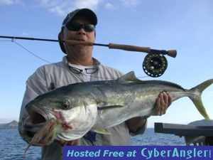 Yellowtail Kingfish on the Fly in New Zealand