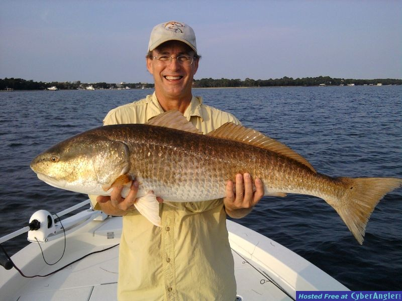 big_redfish