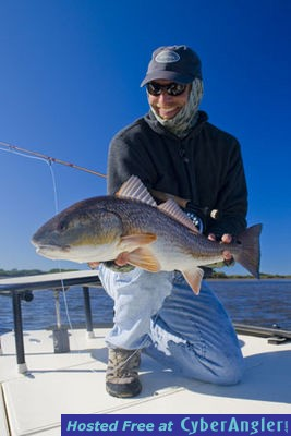 Fly fishing st petersburg tampa florida for Tampa fly fishing