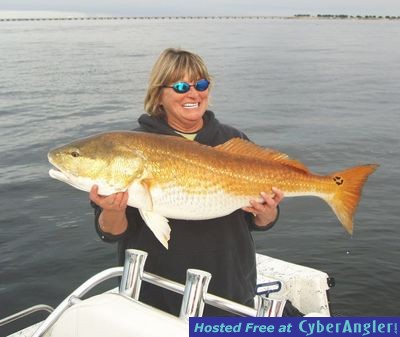 Destin navarre pensacola florida inshore fishing report for Pensacola fishing forecast