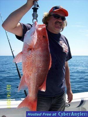 Jacksonville offshore fishing report 3 14 11 for Fishing report jacksonville fl