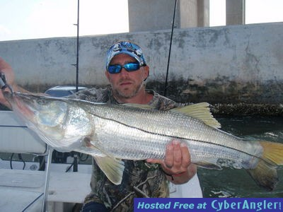 Big fish tampa skyway bridge for Skyway fishing report