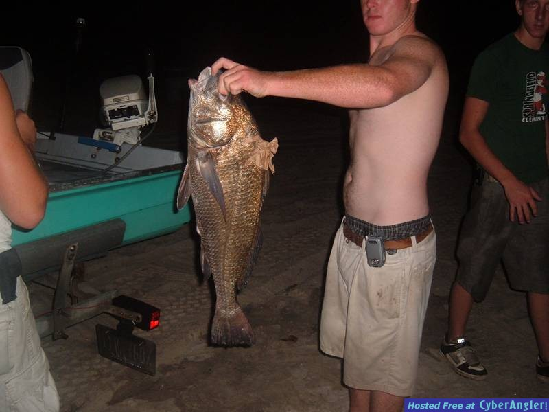 Big black drum caught in St.Andrews Bay Fla.
