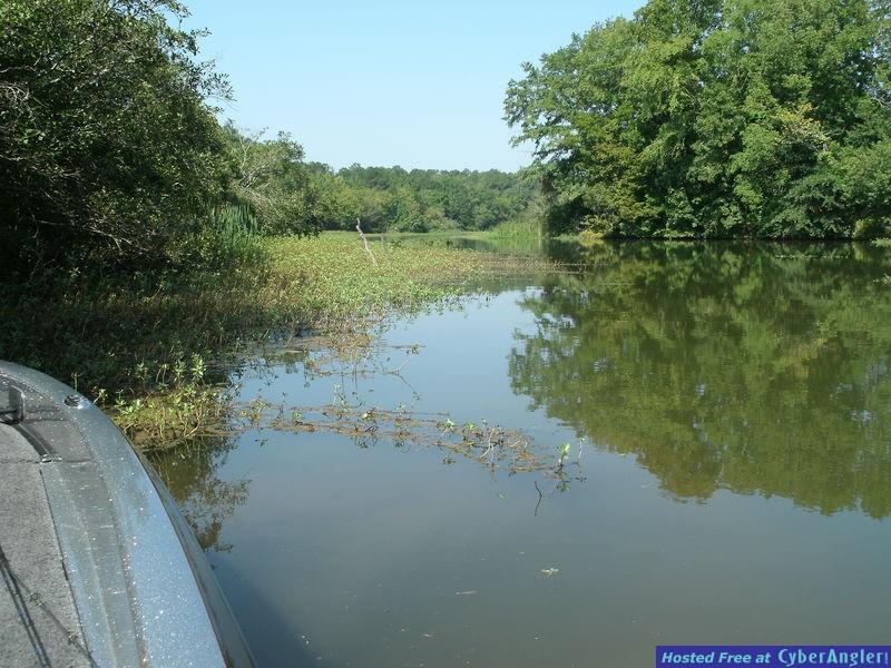 Alabama's Lay Lake Early Fall Bass