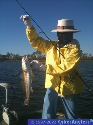 North florida slam every day in panama city florida for North florida fishing report