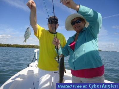 plenty of trout tampa bay