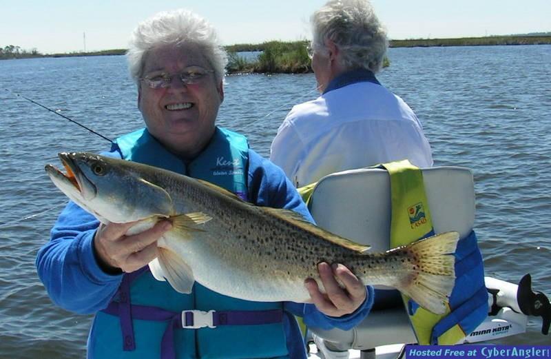 7lb 4oz speckled trout