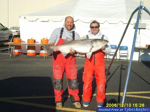45.65 lb Striped Bass
