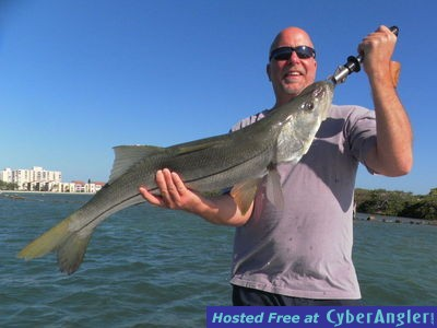 Clearwater fl april fishing report for Clearwater beach fishing
