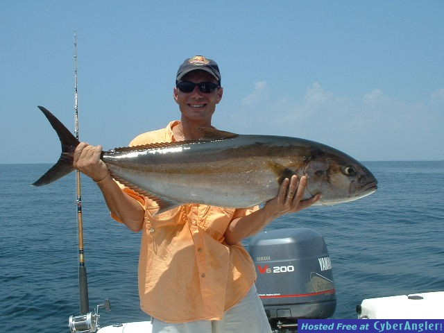 How about a 47 pound Amberjack, on 20lb. spinning tackle.