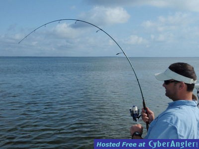 Pensacola redfish trout and sharks at redfish u aug 17 20 for Pensacola fishing forecast