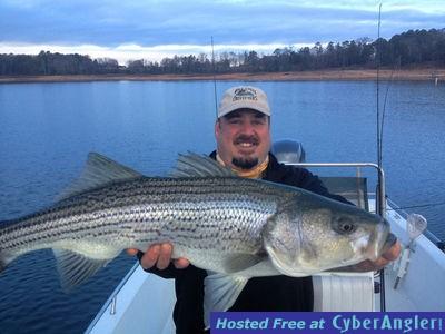 Mild winter so far stripers easy to locate for Lake hartwell striper fishing report