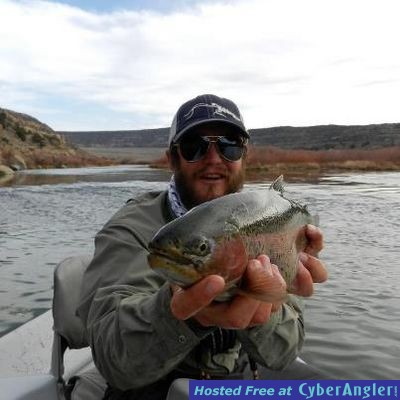Winter fishing on the san juan river near pagosa springs co for Colorado springs fishing