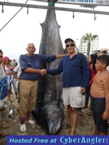 MONSTER BLACK MARLIN CAUGHT IN SALINAS, ECUADOR