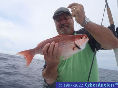 Panama city florida fishing report for Panama city fl fishing report