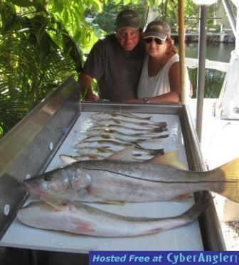 Key largo fishing report 11 04 13 backcountry inshore for Key largo fishing report