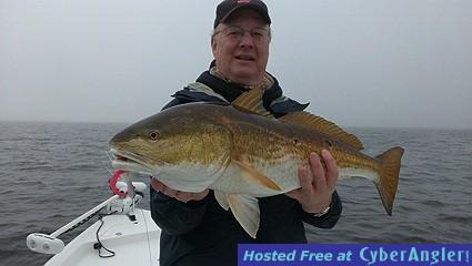 Big Pensacola Bay Red