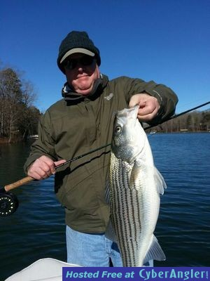 Lake hartwell fishing forecast for february 2014 for Lake hartwell striper fishing report