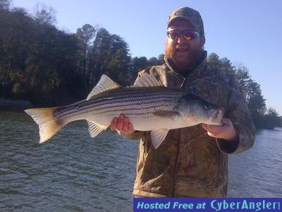 Stripers and spots on lake lanier for Lake lanier fishing spots