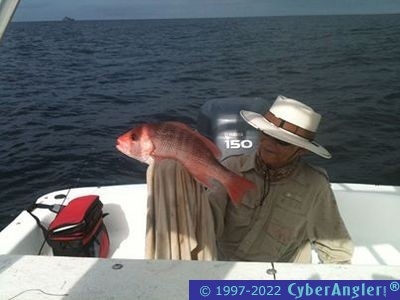 Snapper season dates set for state waters around panama for Panama city fishing report