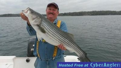 Stripers spots and crappie on lake lanier for Lake lanier fishing spots