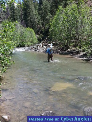 Great fishing in pagosa springs co for Colorado springs fishing