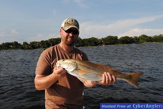 Redfish - Pensacola Charters