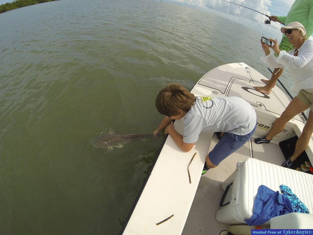 Releasing a Redfish