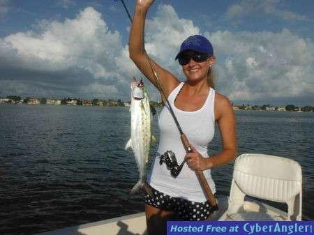 Sarasota fishing report capt jim klopfer 7 26 2014 for Florida saltwater fishing report