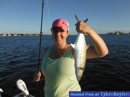 Sarasota fishing report capt jim klopfer 9 18 2014 for Sarasota fishing report