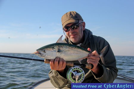Fly fishing tampa st pete beach anna maria fall fly for Fishing report tampa bay